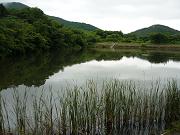 葦毛湿原2.png